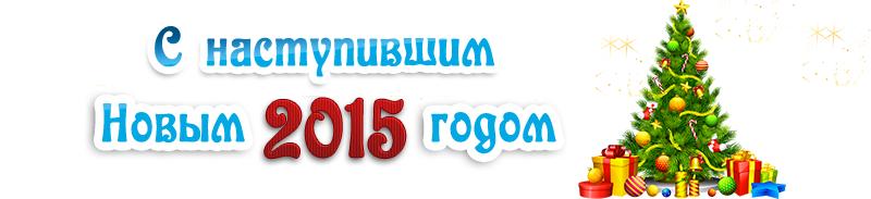 АЕ-НГ-2015-ЕЛКА
